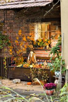 """Podzim není jen ochladných nocích amlhavých ránech. Dává také příležitost ktvorbě kouzelných zátiší. Šikovná Kateřina si je pokaždé """"vymazlí"""" do posledního lístečku."""