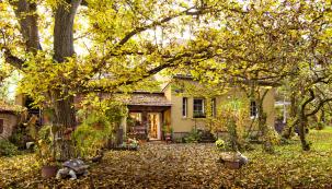 Ať se mezi stromy převalují cáry mlhy, nebo do jejich řídnoucích korun bubnuje déšť, vhloubi téhle zahrady stále panuje vlídná atmosféra. Podzim ji proměnil vmagickou krajinu, ve které si jako vpohádce připadají iti, kdo na skřítky akouzla nevěří.