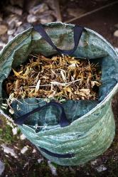 Z kompostovaného listí můžete připravit prvotřídní listovku pro pěstování rostlin.