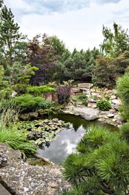 Práce srozličnými tvary abarvami dřevin rozhodně není to jediné, co vtéhle zahradě zasluhuje obdiv. Také kombinace vody apřírodního kamene se tvůrcům povedla najedničku.