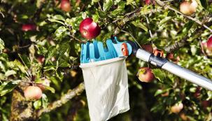 Česáčky sprodlužovacím nástavcem si hravě poradí skaždou korunou stromů, sáček je zbavlny.