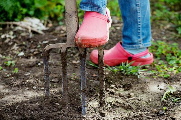 Rytí je prospěšné pro těžké jílovité půdy, má ale i své nevýhody. Narušuje přirozené prostředí prospěšných půdních mikroorganismů a ničí ustálenou půdní strukturu. Šetrnější je půdu jen prokypřit, neobracet ji.