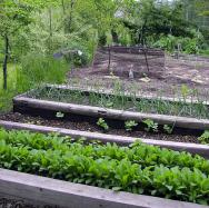 Pevné okraje poskytují možnost přikrýt záhony sklem nebo fólií aprodloužit tak pěstební sezonu.