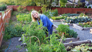 Na konci sezóny bývá zahrada nejštědřejší. Můžete si vychutnávat čerstvé plody, připravovat domácí pokrmy či uschovávat přebytky. Poznáváte, že zahrada může být krásná azároveň iužitečná po celý rok.