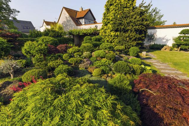 Nechali se inspirovat japonskou zahradou, ale tvořili ji podle sebe. Výsledkem je nádherná oáza klidu pro rodinu apřátele milovníka bonsají.