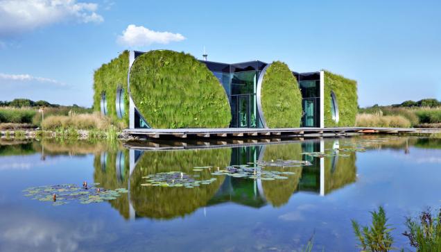 Budova společnosti LIKO-S ve Slavkově má zelenou střechu i fasádu. Část střechy funguje jako kořenová čistírna, část akumuluje přebytečnou srážkovou vodu.