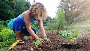 Zima přinesla spoustu podnětů knadcházejícímu období. Naši průvodkyni ekologickýmizahradami Janu Novákovou inspiruje nejvíce čtení knížek nebo zhlédnutí videí sbritskou zahradnicí Alys Fowler. Nabízíme několik návodů apostřehů.