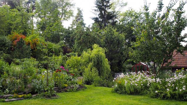 Pohled doseverozápadní části zahrady se skleníkem amalým jezírkem.