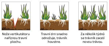 Po vertikutaci trávník houstne a je zdravější. (Zdroj: Mountfield)