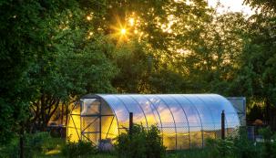 Naše podnebné pásmo nás často nutí při pěstování vlastní zeleniny kprodloužení vegetační sezony. Vhodným místem bývá skleník, fóliovník nebo zimní zahrada při jižní stěně domu.