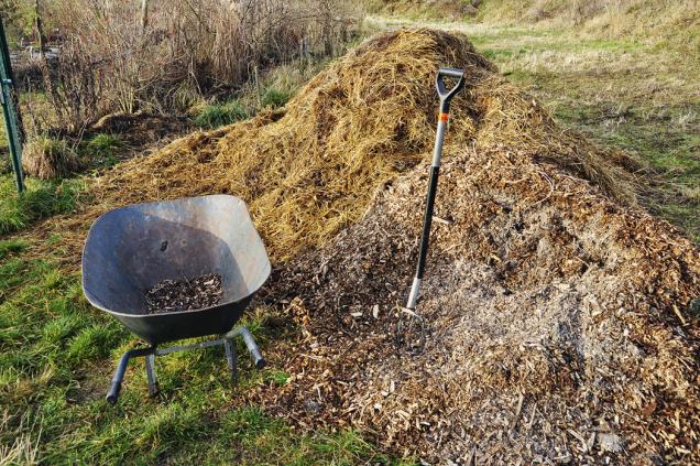 Vždy po sklizni záhon znovu pokryjte organickou hmotou (sláma, slamnatý hnůj, štěpka, dřevěné uhlí, listí). Nepoužívejte seno, z něhož by mohla na záhoně vyklíčit různá semena trav a bylin.