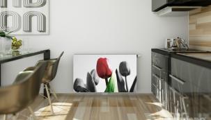 RADIK VKM tulipán (Zdroj: KORADO)