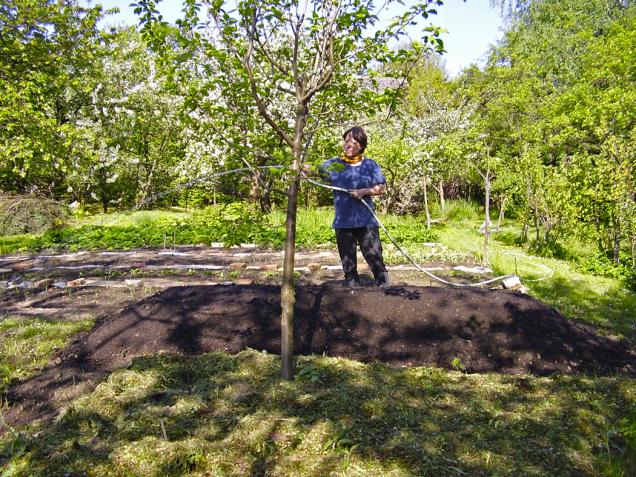 Na průřezu oblé záhony poskytují větší pěstební plochu. Nevýhoda je, že se například hryzci mohou dostat do záhonu z boků (zejména v zimním období).