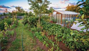 Zdají se vám klasické záhony příliš fádní? Osvěžením zahradního fondu mohou být záhony klopené avyvýšené. Zatrochu námahy to jistě stojí.