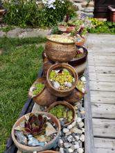 Jak opticky oddělit dřevěnou terasu atrávník? Přece minizahrádkou se sbírkou keramických květináčů snetřesky aoblázky.