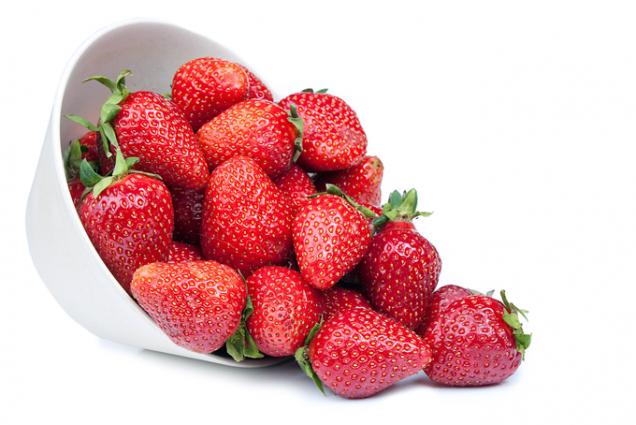 Chuti ivůni jahod plně dozrálých na vlastním záhonku se nevyrovná žádná, byť vzhledově dokonalá jahoda zakoupená vsupermarketu.