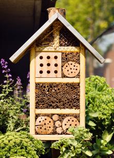 V posledních letech získávají na popularitě zahradní domečky pro hmyz. Možná proto, že se zahradníci snaží alespoň trošku napravit škody způsobené intenzivním zemědělstvím a chtějí se cítit blíže přírodě.