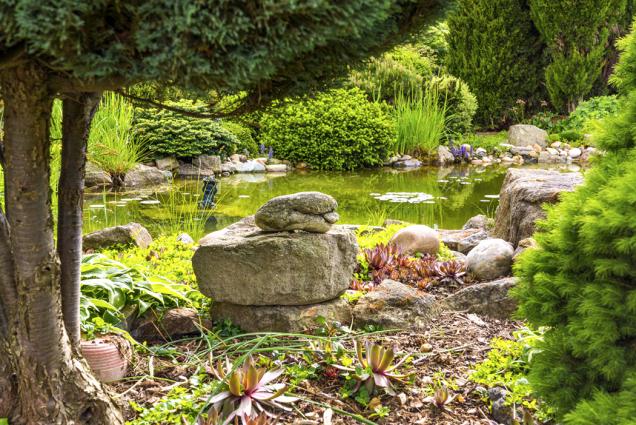 Také kameny jsou velkou zálibou manželů Vašákových. Jejich pečlivý výběr dotváří styl zahrady.