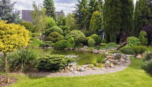 Menší jezírko (12 m3) obklopuje břeh vytvořený zkačírku adoplněný sbírkou čarověníků.