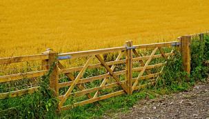 Barva se na vašem plotě pomalu olupuje a pergola už nevypadá tak hezky, jako když jste ji postavili? Pak je třeba pustit se do práce! Léto je skvělým obdobím pro obnovení barevného nátěru, který bude v teplých podmínkách krásně schnout. (Zdroj: Brudra)