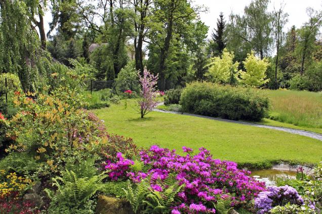 Rozkvetlá skalka vpopředí svýhledem donekosené části zahrady