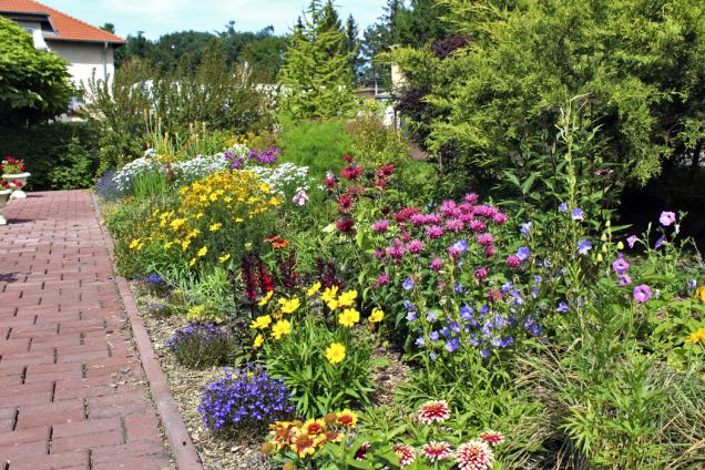 Krása letní zahrady umocněná trvalkami