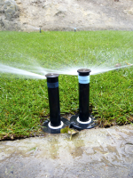 Distribuce vody by měla být stejnoměrná, což nikdy nezaručíme závlahou manuální.