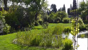 Výhodou citlivě zrekonstruované zahrady jsou staré stromy, které zajistí nejen blahodárný stín vletních vedrech, ale ivertikální zelenou hmotu, nakterou jinak musíme čekat roky.