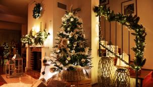 Vánoce už pomalu klepou na dveře a přípravy na ně jsou v plném proudu. Města i domácnosti začínají se sváteční výzdobou, v obchodních centrech hrají koledy a ženy oprašují recepty na vánoční cukroví. (Zdroj: Mountfield)