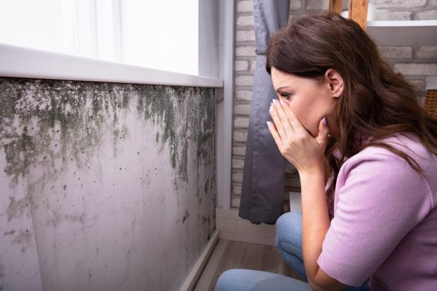 Když se vám doma začne držet příliš vlhkosti, tak to nikdy nekončí dobře. Mokré mapy na stěnách značně uberou na estetickém dojmu kterékoli místnosti a mohou nenávratně zničit váš nábytek.  Když to navíc dojde tak daleko, že se vám v koutech začnou tvořit plísně, může být ohroženo zdraví vás i celé vaší rodiny, a to především malých dětí. (Zdroj: vzdusin.cz)