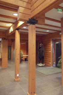 Dřevěnou konstrukci lze s výhodou užít i pro administrativní či skladovací objekty. Sídlo společnosti Dagros v Kostomlatech je jednou z největších dřevostaveb tohoto typu u nás. V zahraničí nejsou výjimkou ani roubené stavby komerčních a školských staveb – vpravo administrativní budova Kontio
