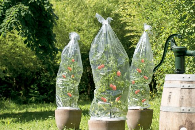 Fólie na rajčata FloraSelf (Zdroj: Hornbach)