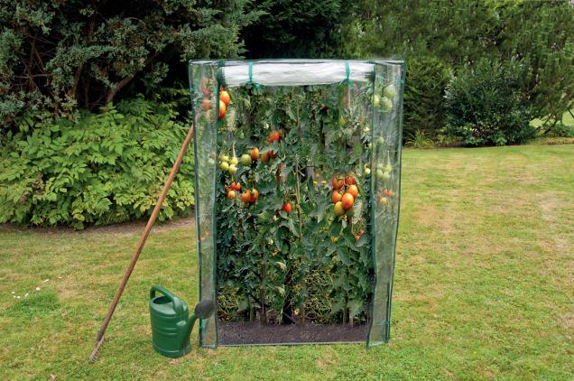 Fóliovník na rajčata (Zdroj: Hornbach)