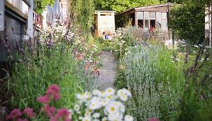 Zahrada v městské části Dubeč na jihovýchodě Prahy podle slov autorů návrhu vyjadřuje přirozenost a soulad moderního člověka s přírodou. Les tvoří přirozenou kulisu rodinného domu, vzrostlé stromy jsou dominantní kostrou zahrady a odvíjí se od nich celkový styl a charakter výsadeb doplňkových rostlin
