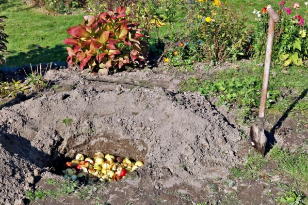 """Pokud máte zahrádku příliš malou a kompost by se u vás """"neuživil"""", můžete zahradní i kuchyňské odpady ukládat rovnou do záhonu, aby z nich rostliny mohly postupně čerpat živiny"""