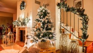 KVánocům neodmyslitelně patří stromeček, který se na Štědrý den rozzáří v celé své kráse (zdroj: Mountfield)