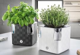 Samozavlažovací květináč Cobble (zdroj: Hornbach)