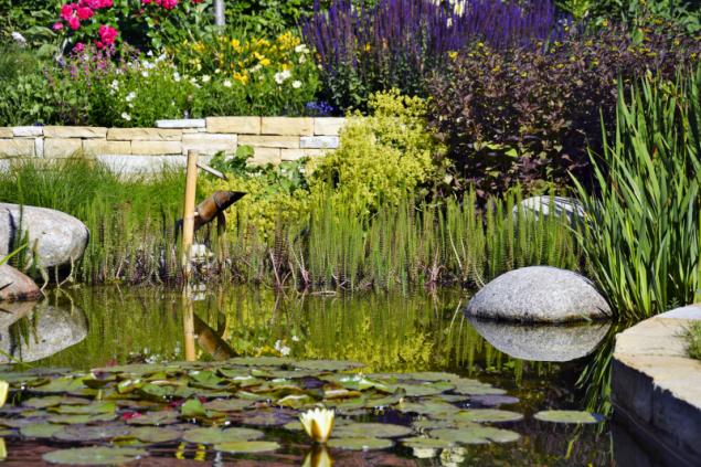 Jedním z oblíbených tematických celků zahradní kompozice jsou vodní prvky