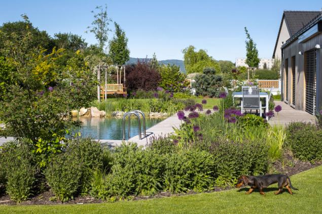 Přírodní jezero nemusí v zahradě vypadat jako malý rybník nebo lesní tůňka. Na první pohled ho často nerozeznáte od bazénu. Ale toho života všude okolo... (foto: Atelier Flera)