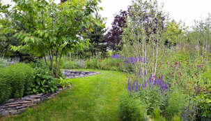 V hlavní části zahrady se jen kousek od oken do obývacího pokoje rozvlní druhově pestrý trvalkový záhon, kterému vévodí vícekmenné břízy himálajské (Betula utilis ´Doorenbos´). Během léta tu rozkvetou jarmanky větší, šalvěje hajní, ale také hlaváče (Scabiosa), svítivě žluté květy krásnoočka přeslenitého (Coreopsis verticillata) a aromatického řebříčku tužebníkovitého (Achillea filipendulina)