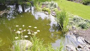 Zahradní bazén podle přírody